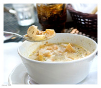 Clam Chowder, Provincetown '08